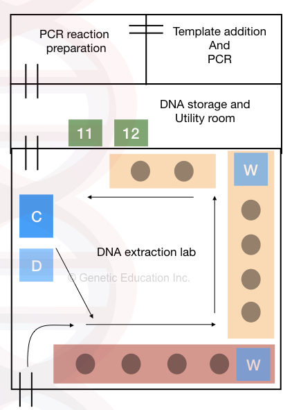 How to set up a DNA extraction lab: A comprehensive guide (chemicals, instruments and other utilities).