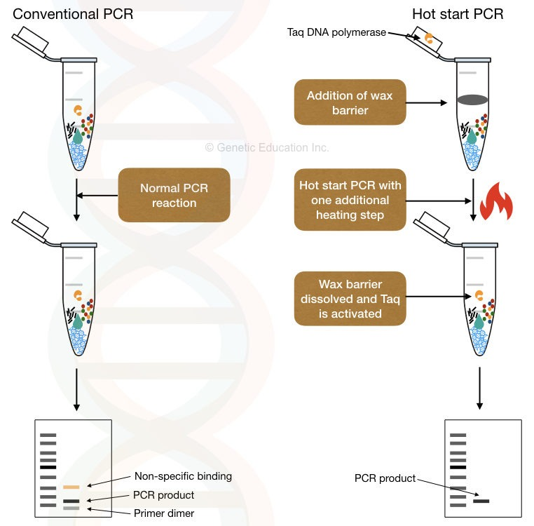 What is a hot start PCR?