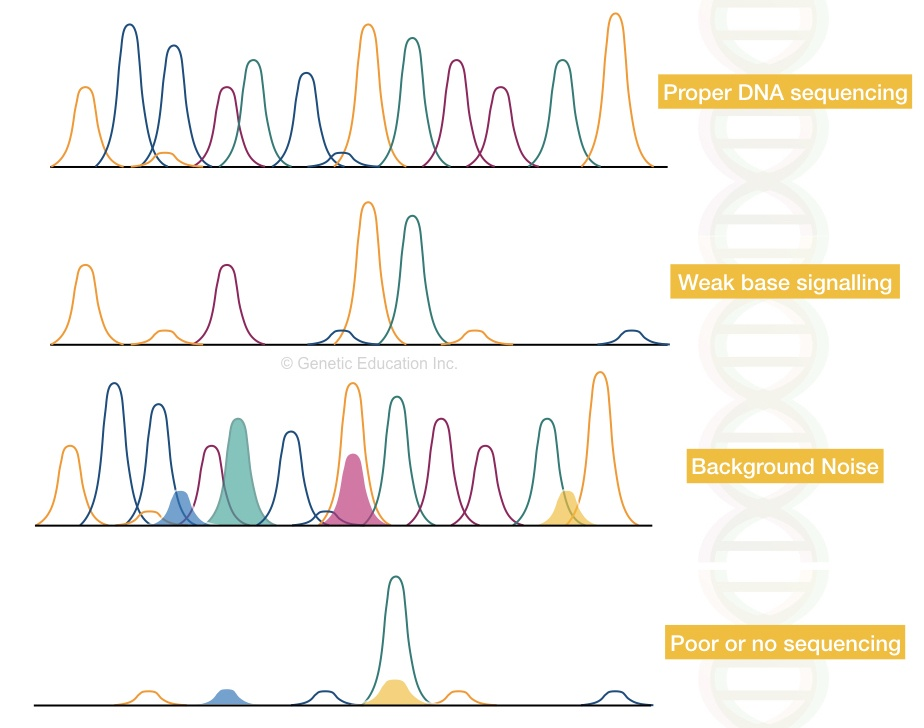 Graphical illustration of common sequencing problems.