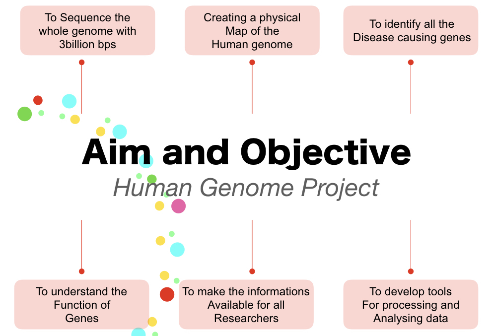 The aims and objectives of human genome project.