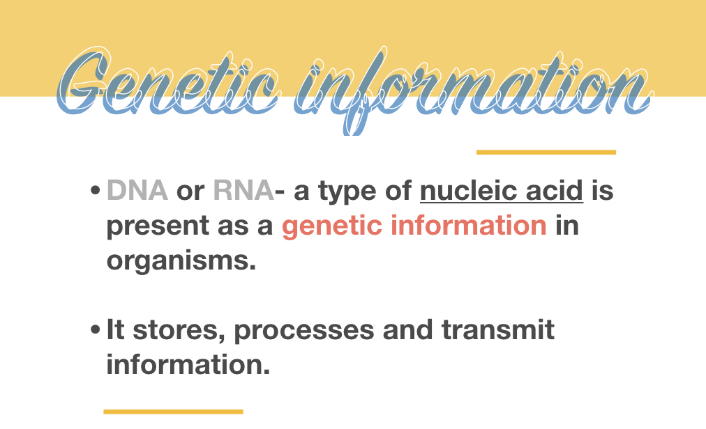 Why is Genetic Information so Important?