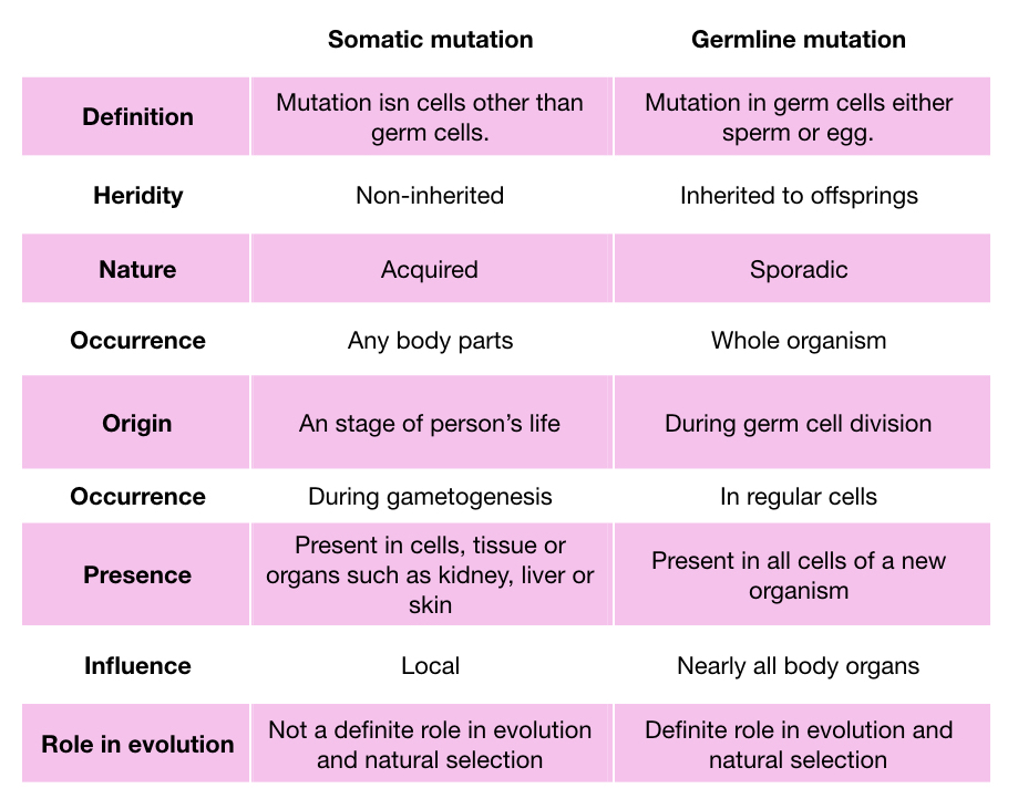 Differences between somatic vs germline mutations